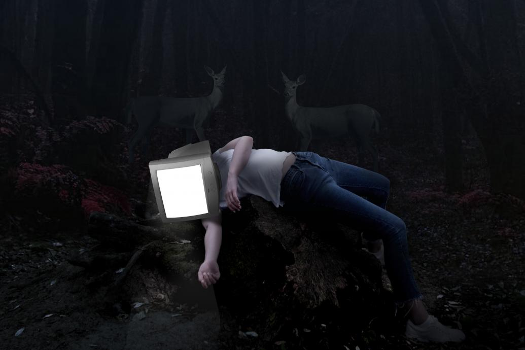 A person with a glowing computer monitor for a head lies on the ground of a dark wood with deer standing behind them